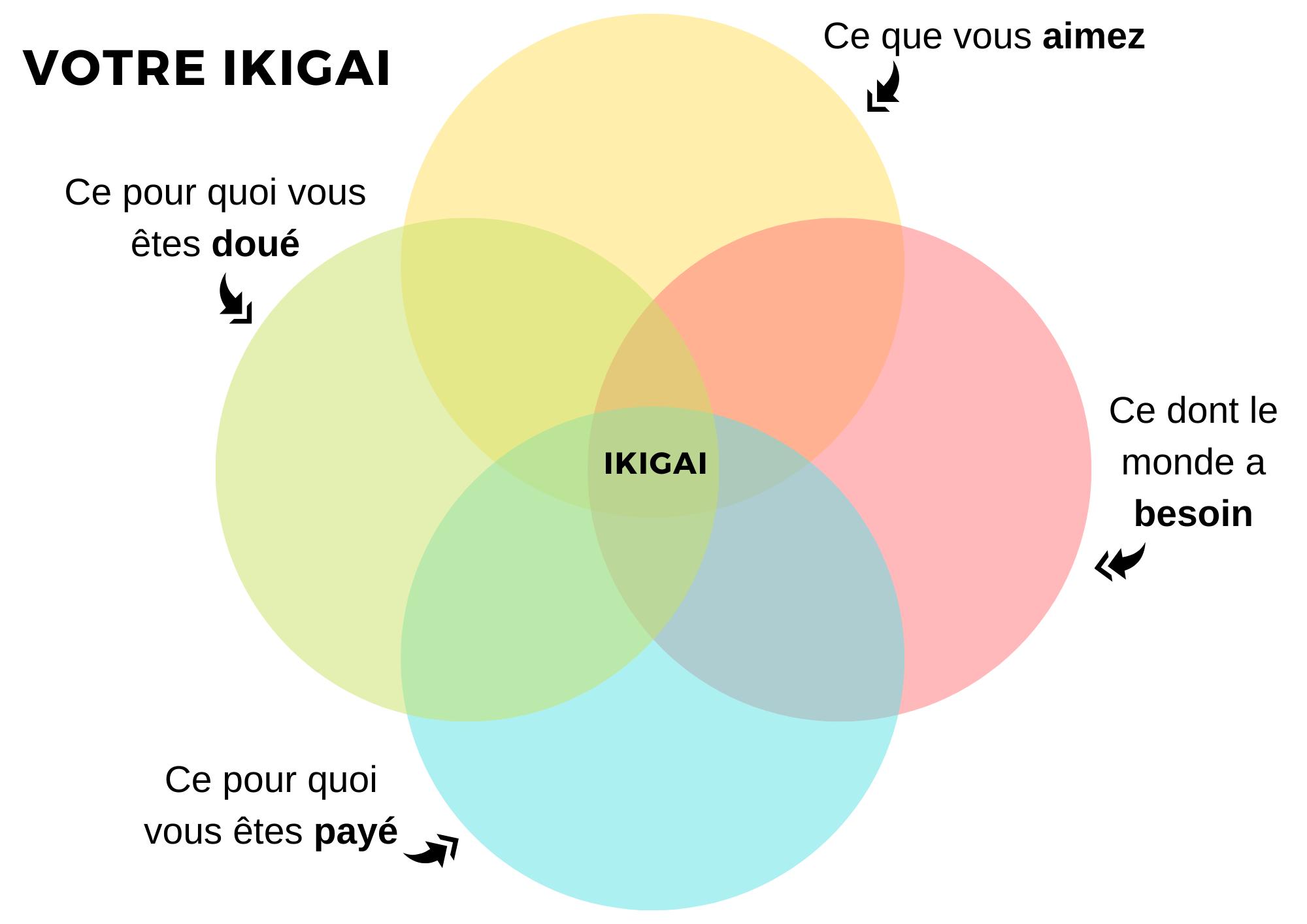 Modèle vierge de l'ikigai à compléter